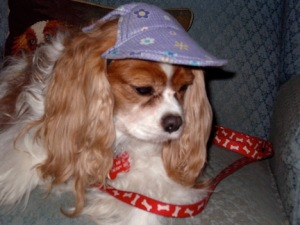 hannah with hat